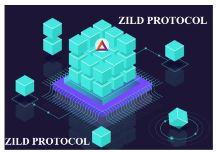 Spotlights on Quidax and the Zild Protocol